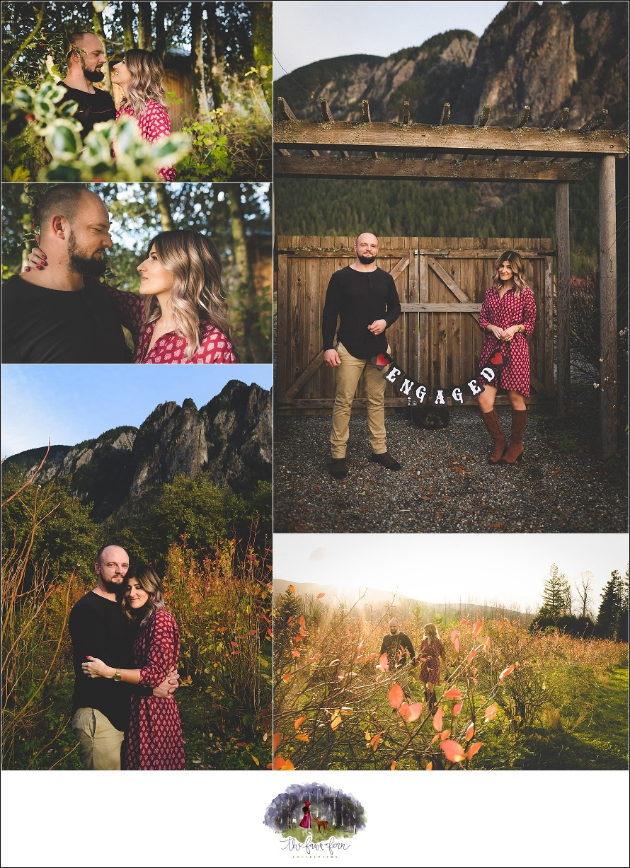 bybee farms,couples,couples session,engagement,engagement session,love session,mount si,north bend,washington state,